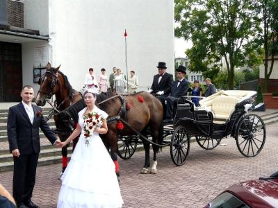 Wesele Oleśnica 2012